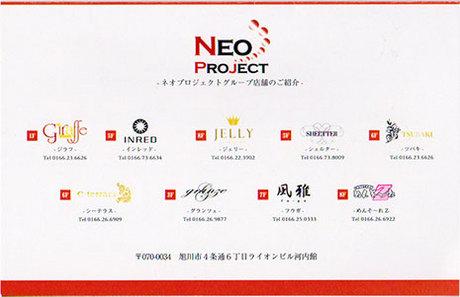 neoproject2.jpg